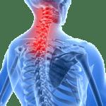bolnisindromkraljeznice1